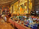 Multitude of offerings at a long life ceremony (tenshug) for H.E. Gonsar Rinpoche and H.E. Rabten Rinpoche at Rabten Chöling, Switzerland