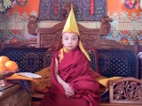 The latest portrait of the young reincarnation of His Eminence Kyabje Dagom Rinpoche