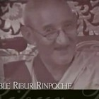 Discovering Buddhism: Ribur Rinpoche on Five Forces‬