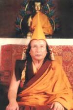 Trisur-Rinpoche