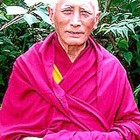 An Open Letter to Gelug Monasteries and Sangha Regarding Dorje Shugden