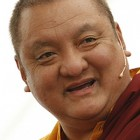 Shamar Rinpoche says that Dorje Shugden practitioners' protests are effective