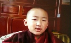 The return of the unmistaken Denma Gongsa Rinpoche