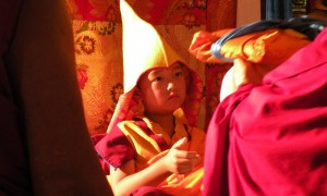A picture of Domo Geshe Rinpoche during His enthronement ceremony in 2009