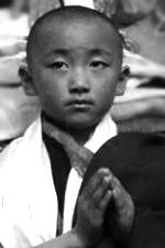 he-20th-denma-gonsa-rinpoche
