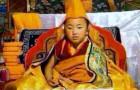 The 19th Denma Gonsa Rinpoche