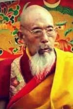 H.E. Kyabje Ngachen Rinpoche from Tashi Lhunpo Monastery