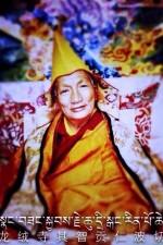 nangsang-kyabje-chutrikang-rinpoche
