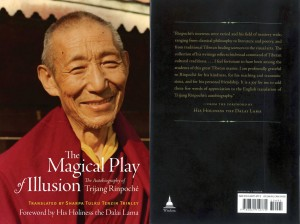 MagicalPlay-thumb2