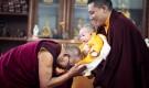 Is Karmapa Thaye Dorje's son the incarnation of Sharmapa Rinpoche?