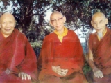 HH Ling Rinpoche, HH Trijang Rinpoche and HH Zong Rinpoche