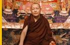 Kyabje Domo Geshe Rinpoche