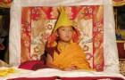 Kyabje Domo Geshe Rinpoche Losang Jigme Ngak-Gi Wangchuk