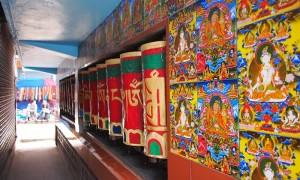 tibetexilefuturethumbnail