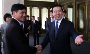China's Vice-Minister for Public Security Meng Hongwei was elected Interpol President